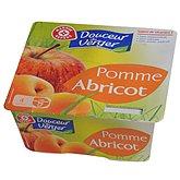 Dessert fruitier pomme abricot